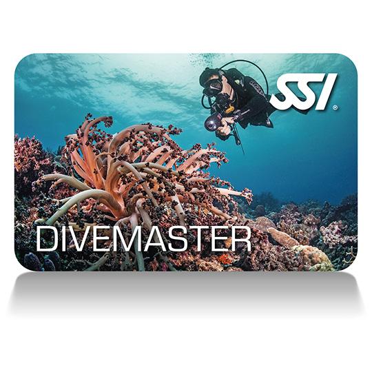SSI Divemaster