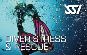 SSI_Stress_and_Rescue