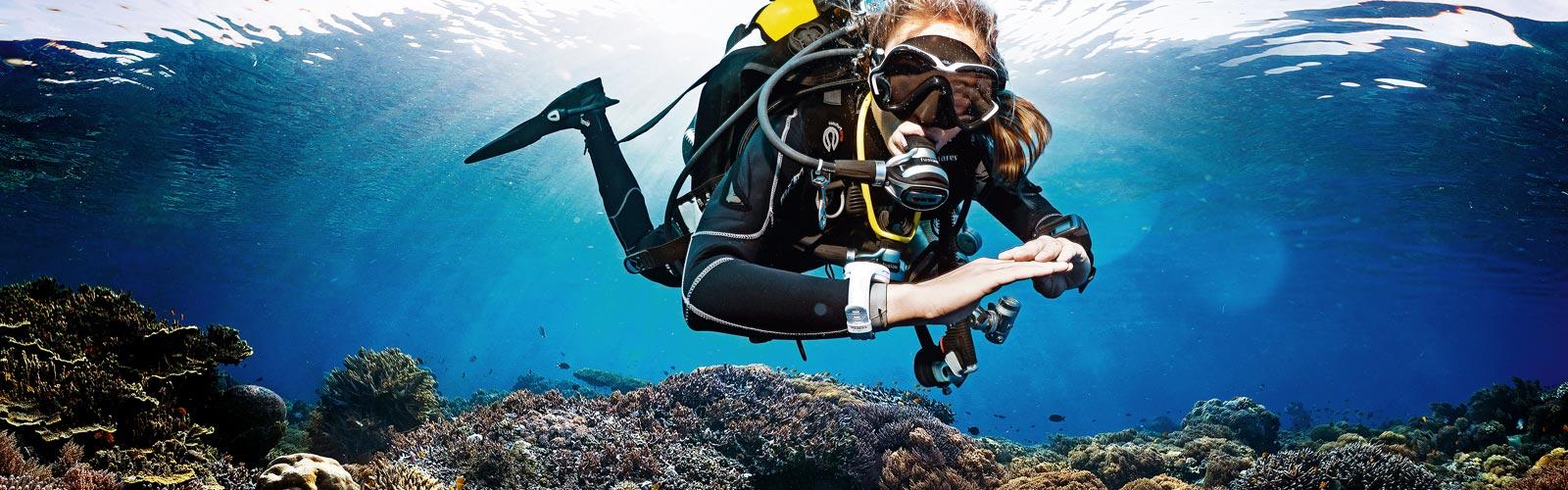 Grundkurs dykning