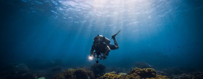 Dykare över korall på dykresor
